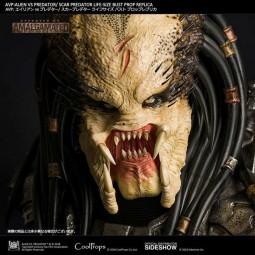 Scar Predator - Aliens vs Predator - Life-Size Bust