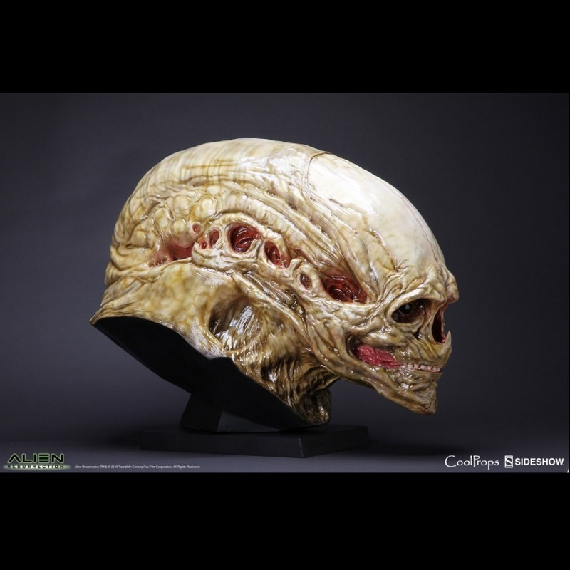 New Born Alien - Aliens Resurrection - Life-Size Head