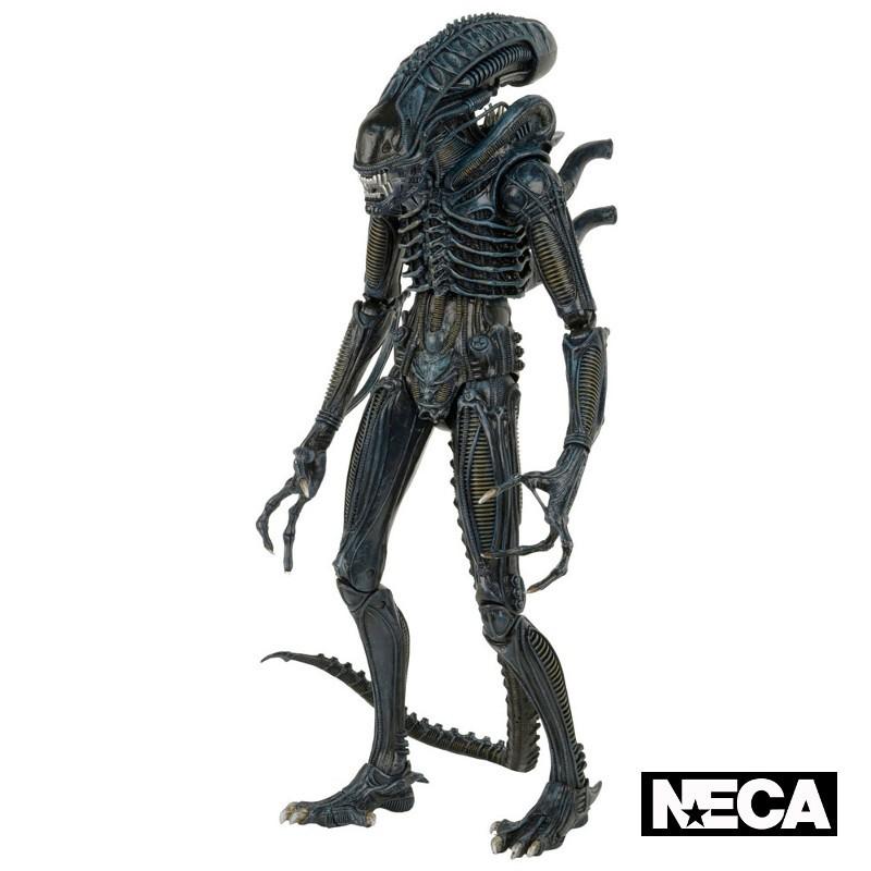 Warrior (1986) - Aliens - 1/4 Scale Actionfigur