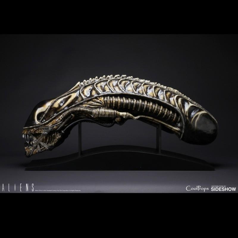 Alien Warrior - Aliens - Life-Size Head