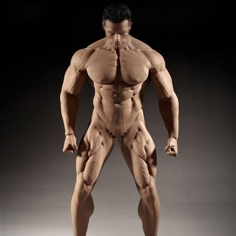 1 6 Scale Female Seamless Body Große Büste Figur Puppe /& männlich
