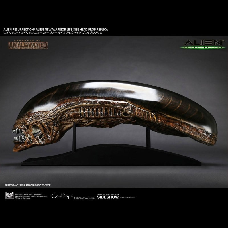 New Warrior - Alien Die Wiedergeburt - Life-Size Head