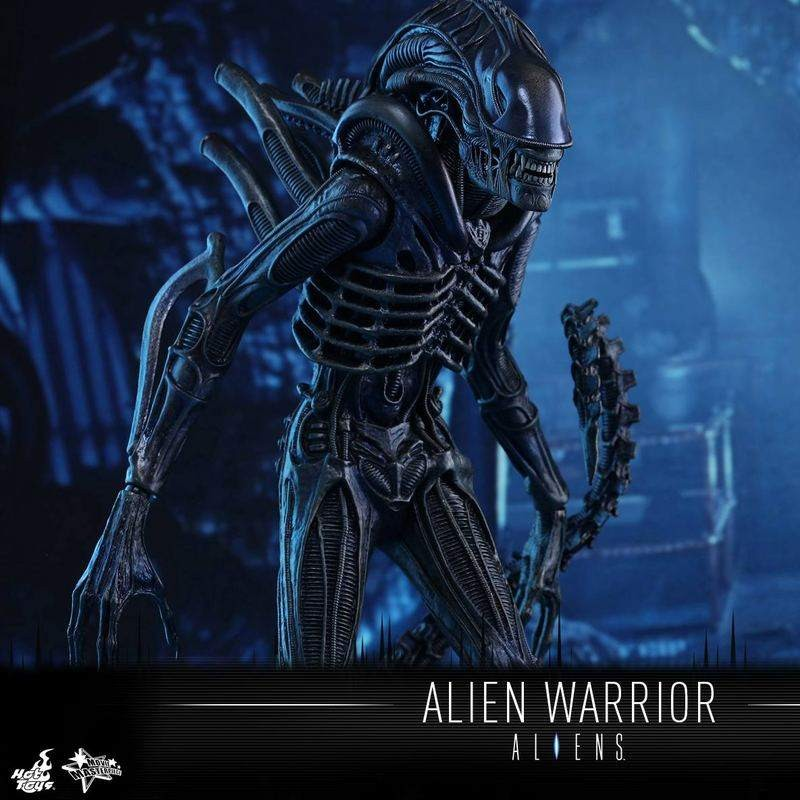 Alien Warrior - Aliens - 1/6 Scale Figur