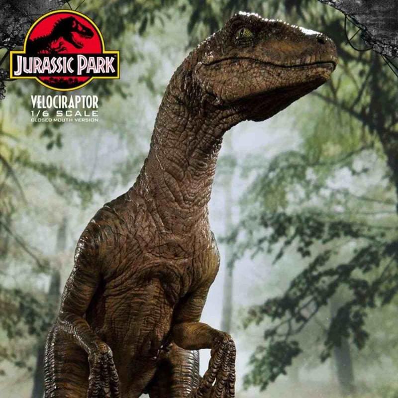 Velociraptor Closed Mouth Version - Jurassic Park - 1/6 Scale Polystone Statue