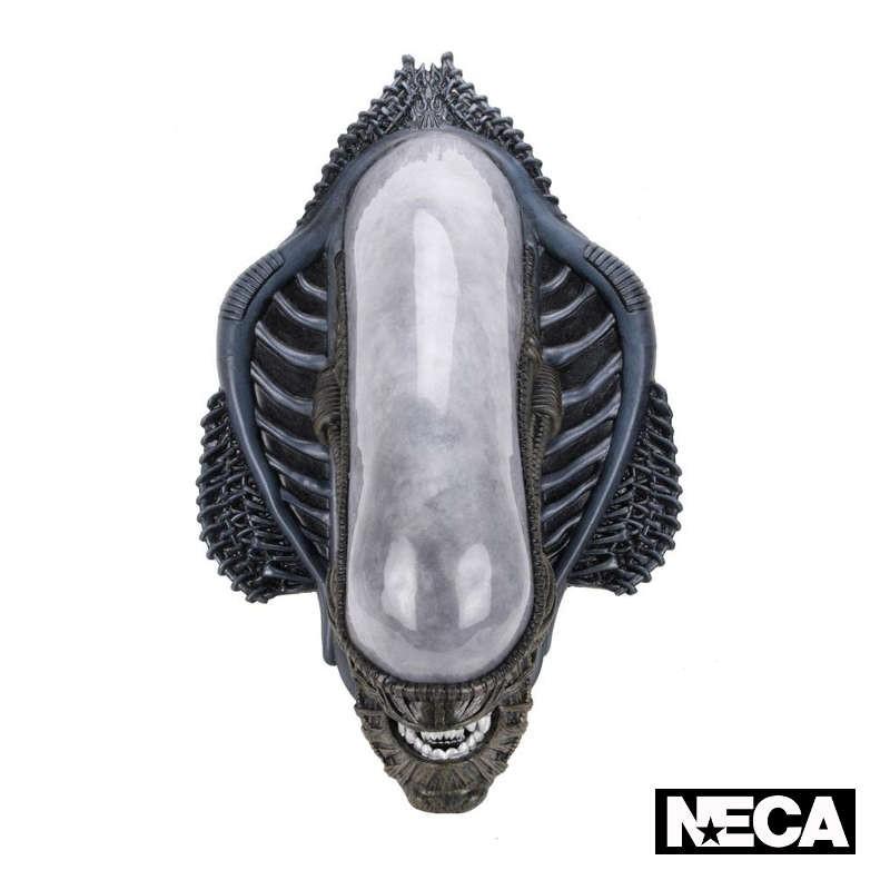 Xenomorph - Alien - Wandtrophäe (Schaumgummi/Latex)